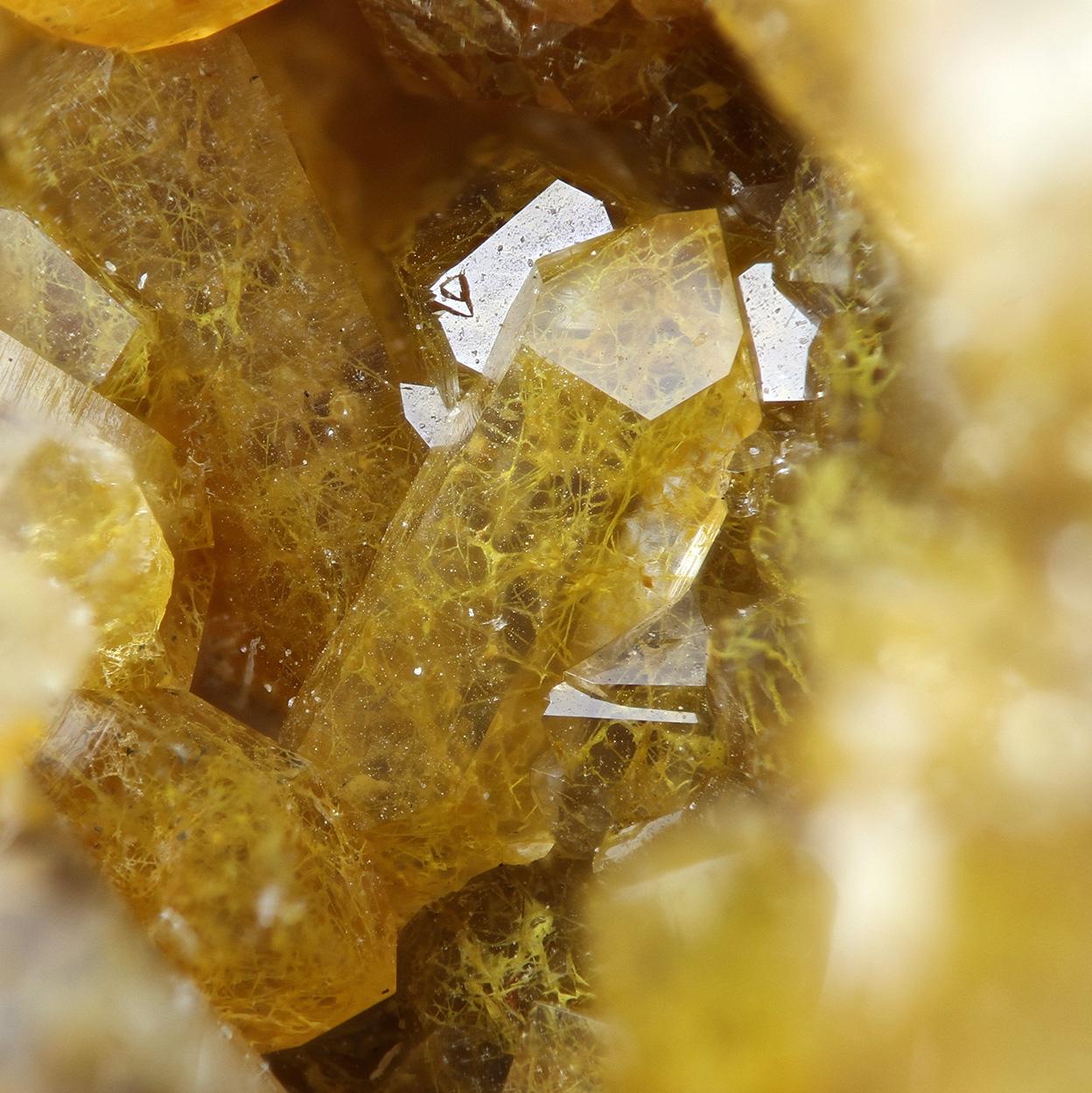 Quartz With Fossil Fungi Mycelium