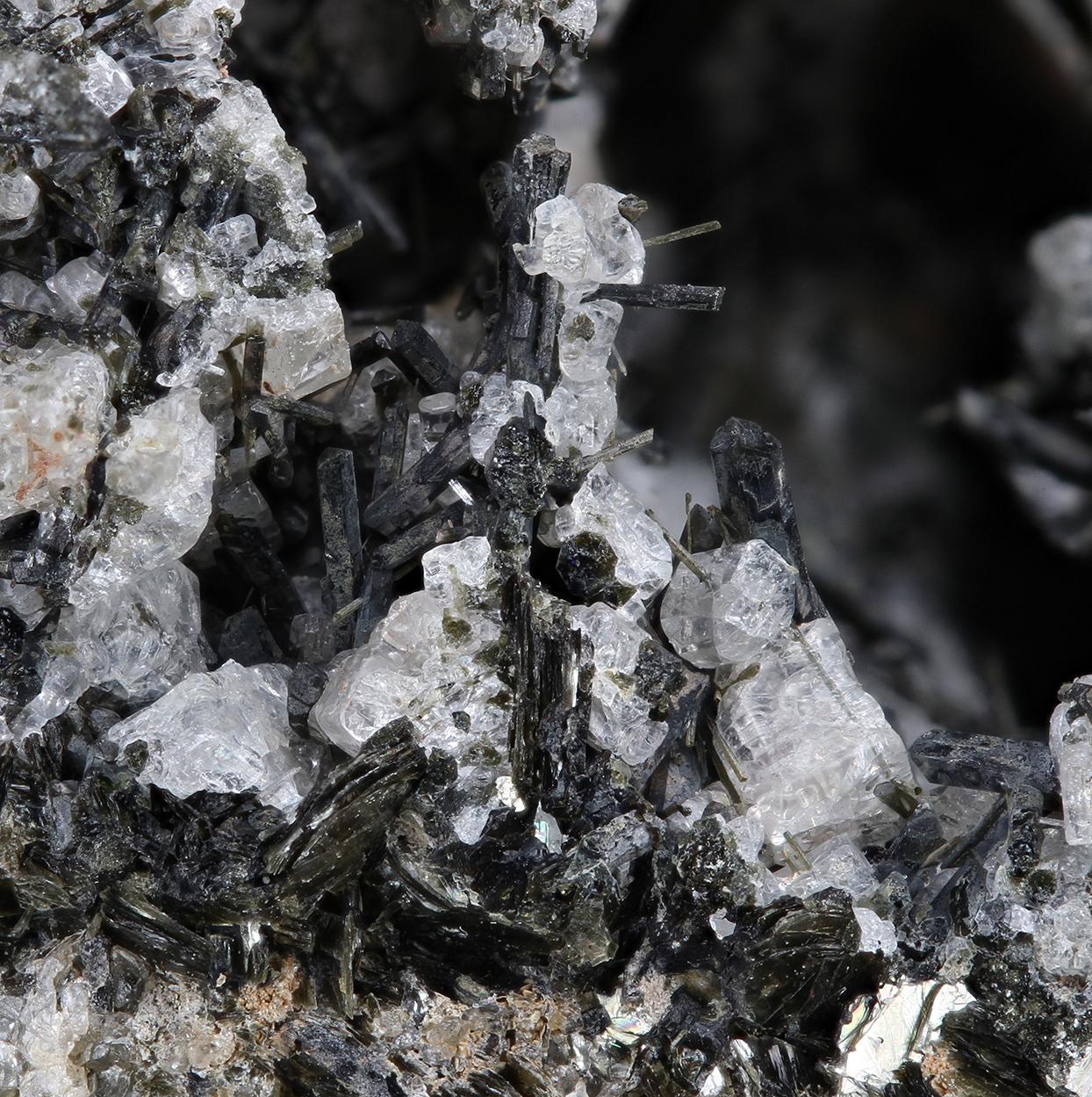 Forsterite Nepheline Biotite & Hornblende
