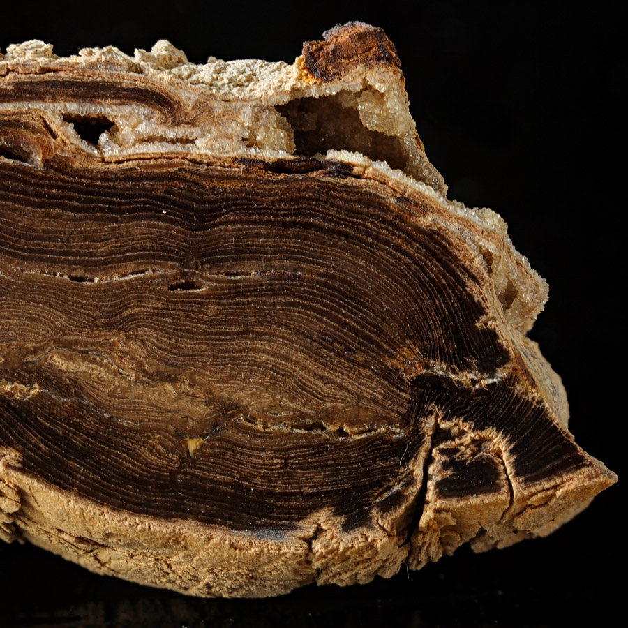 Wood & Quartz