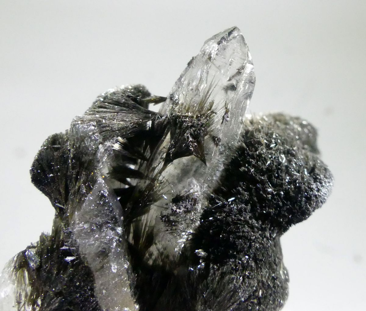 Tourmaline Var Luinaite-(OH) On Rock Crystal