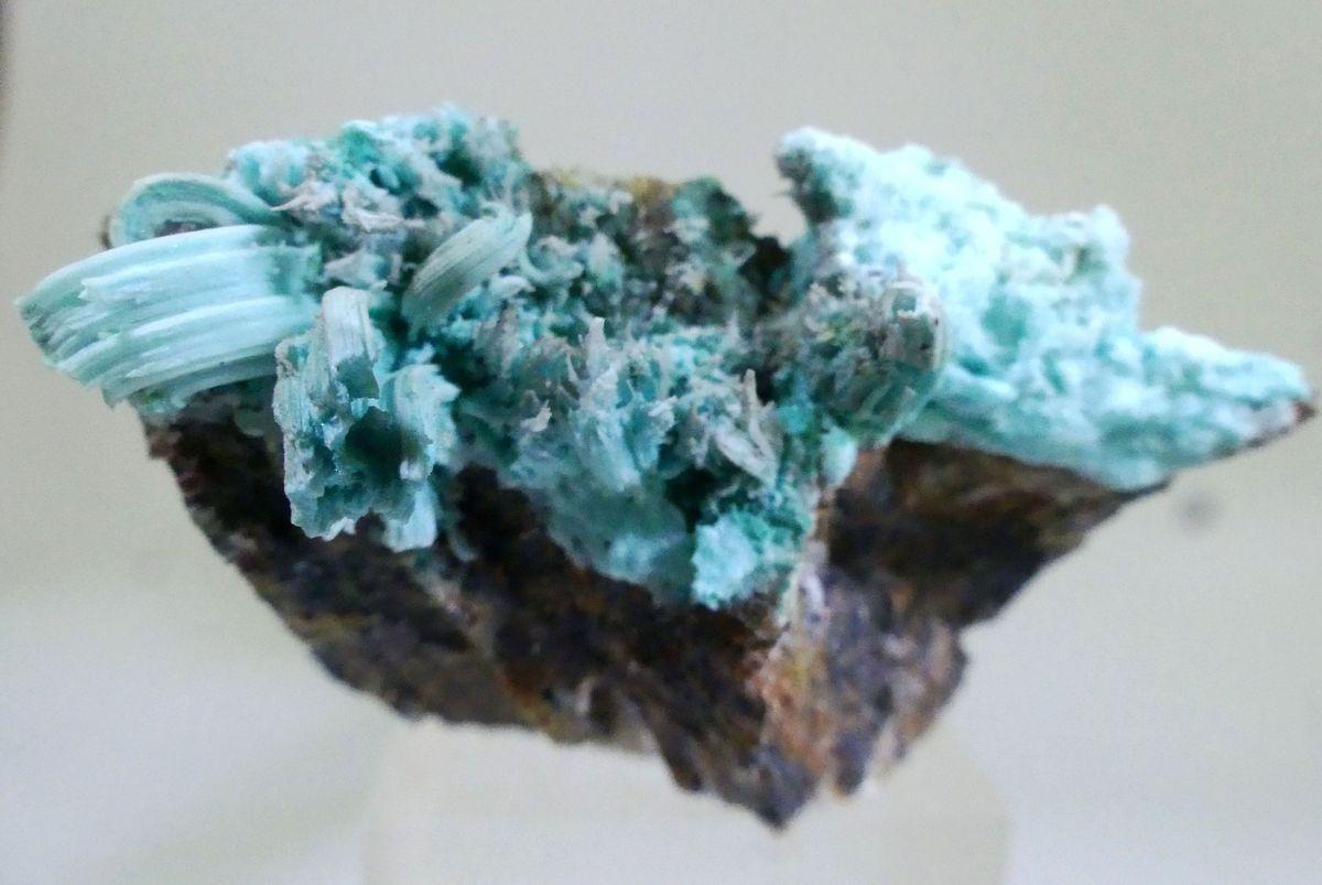Katerinopoulosite & Antlerite