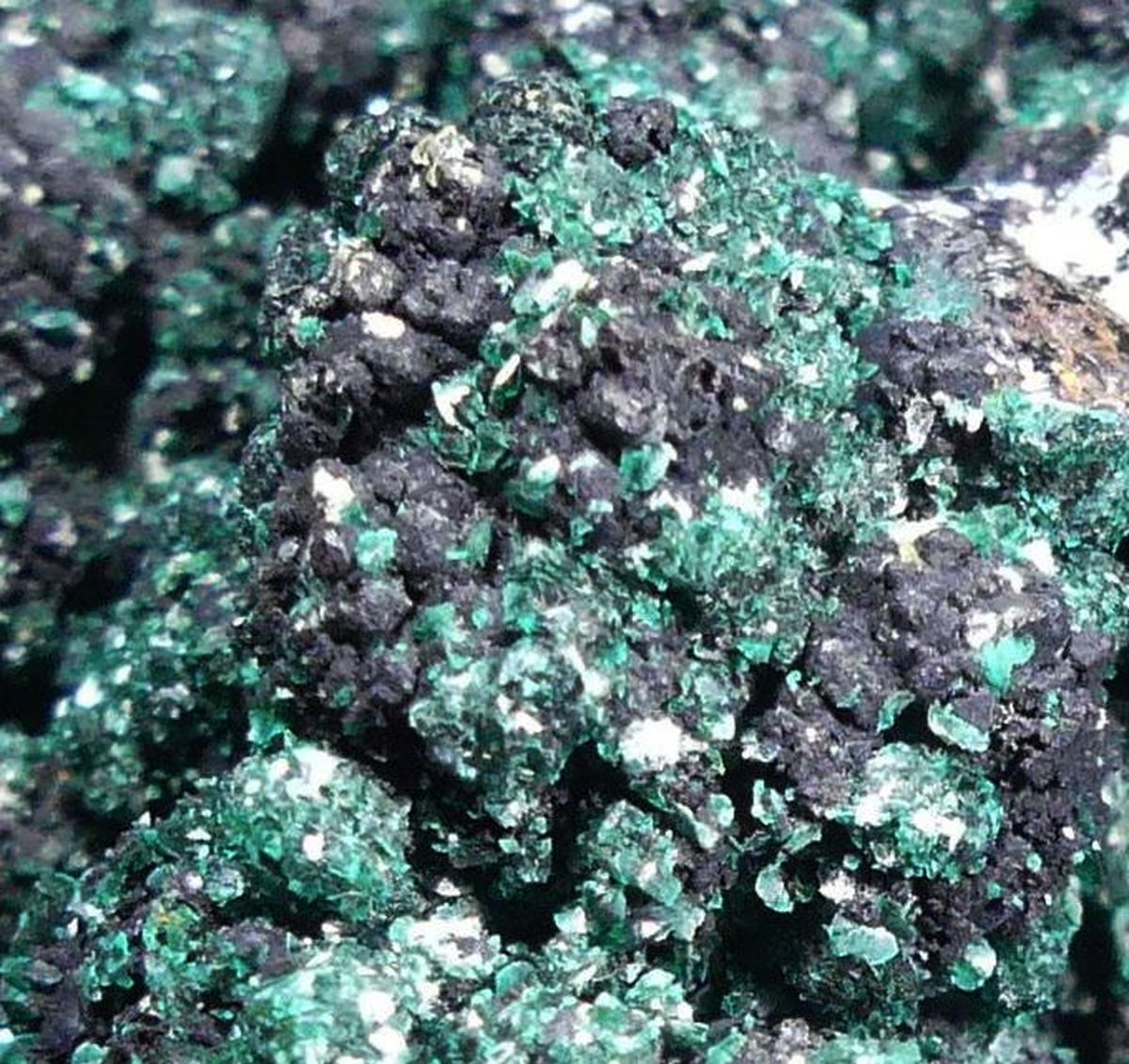 Brochantite On Sphalerite