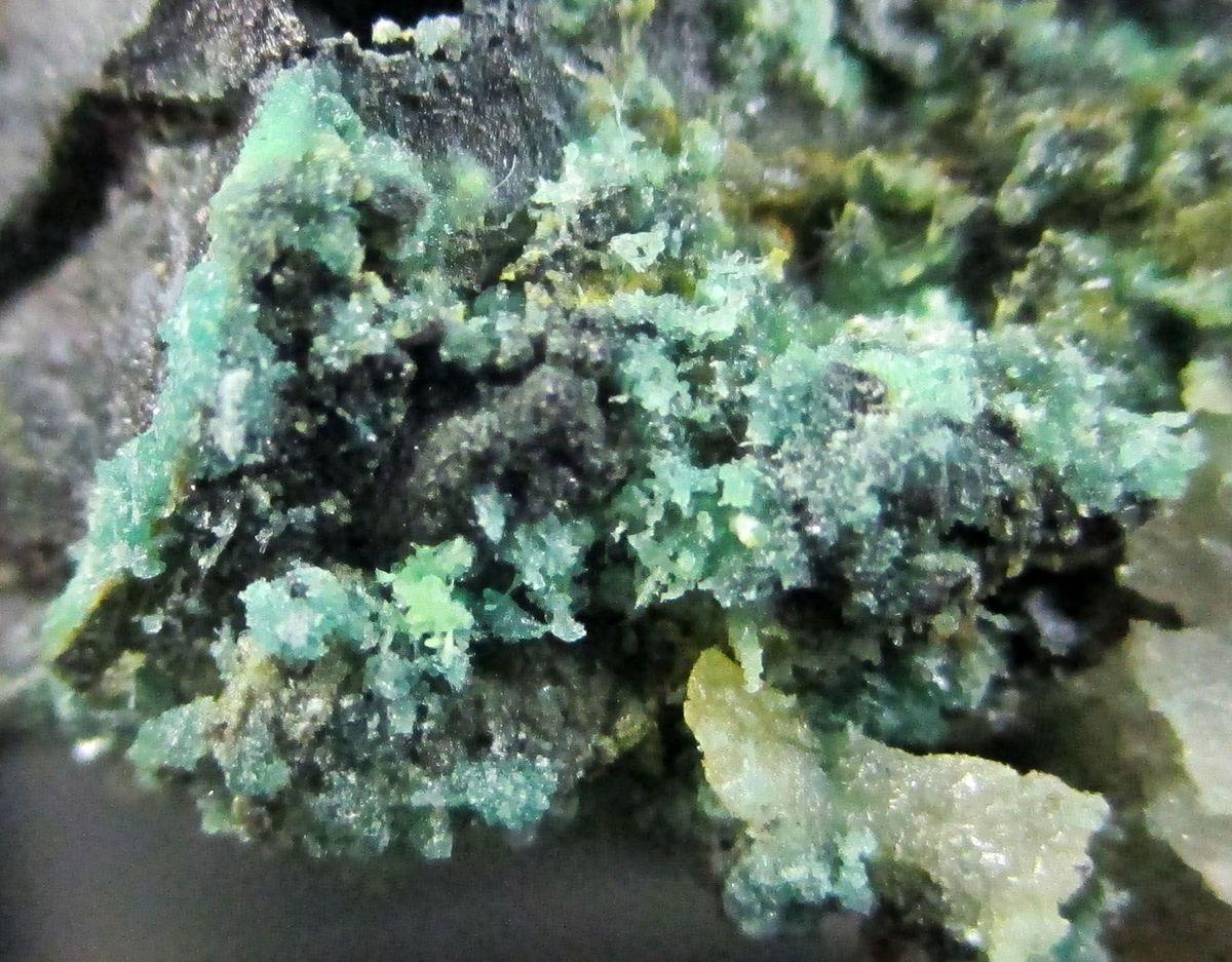 Retgersite Arsenopyrite & Sphalerite