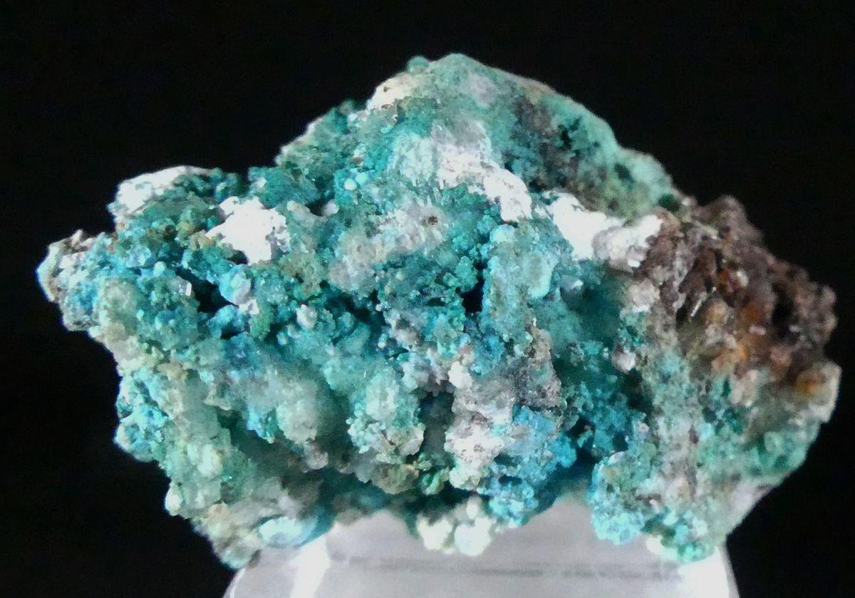 Serpierite Connellite & Gypsum