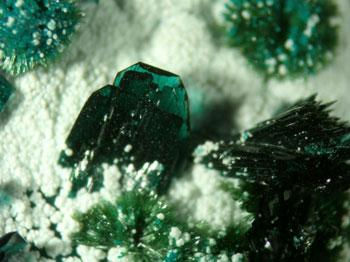 Atacamite With Olivenite & Picropharmacolite