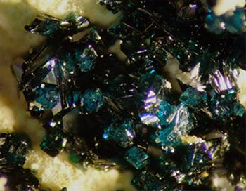 Herbertsmithite & Hydrozincite