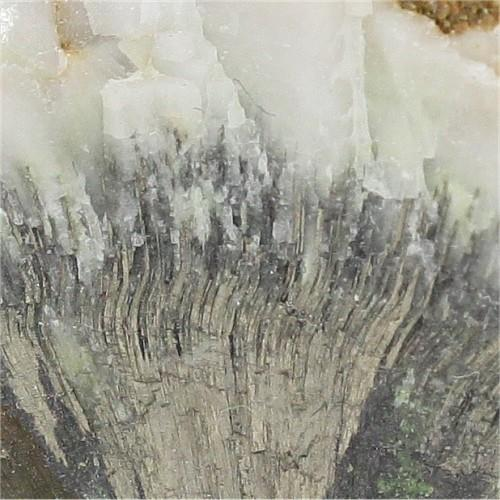 Millerite With Gaspéite