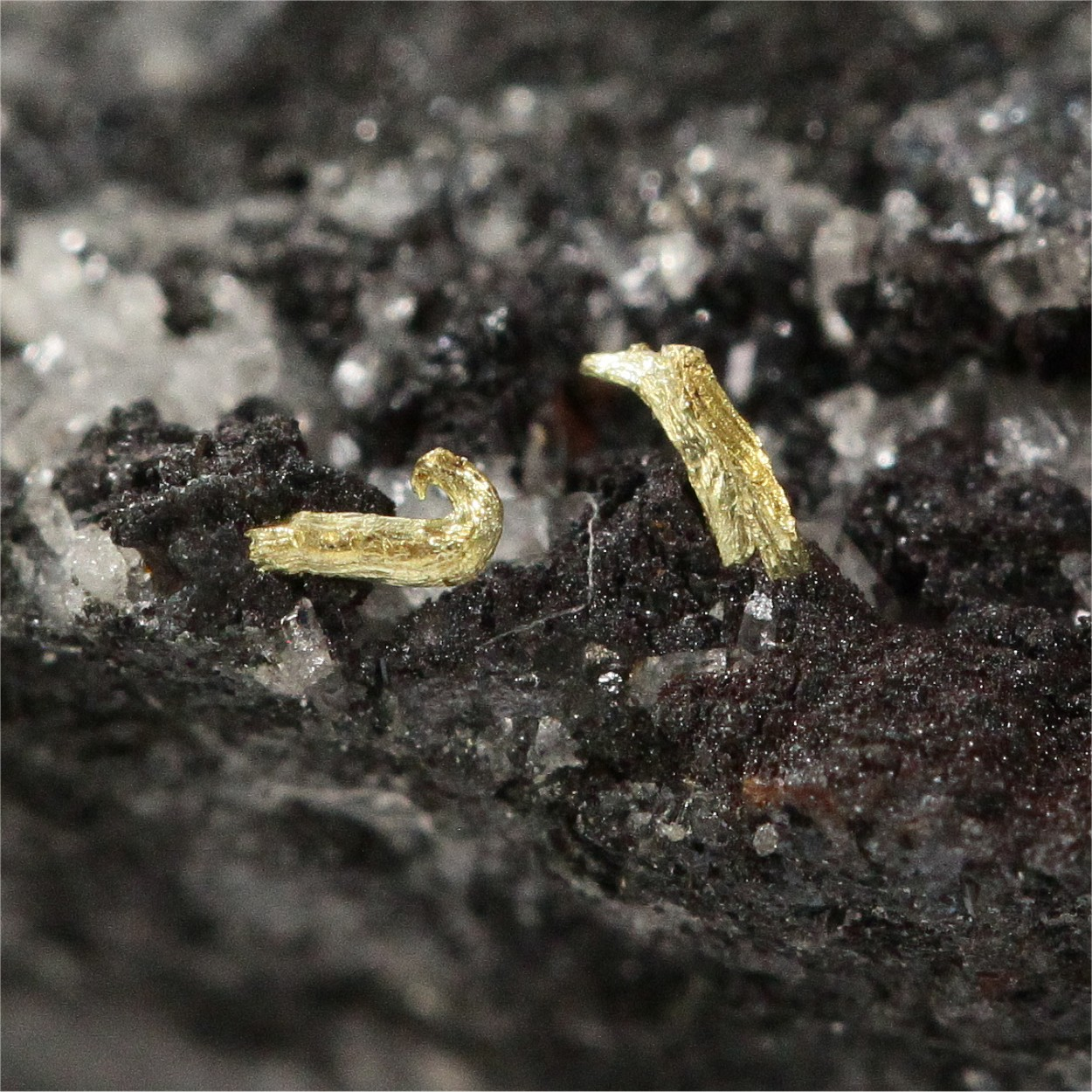 Gold With Chalcopyrite