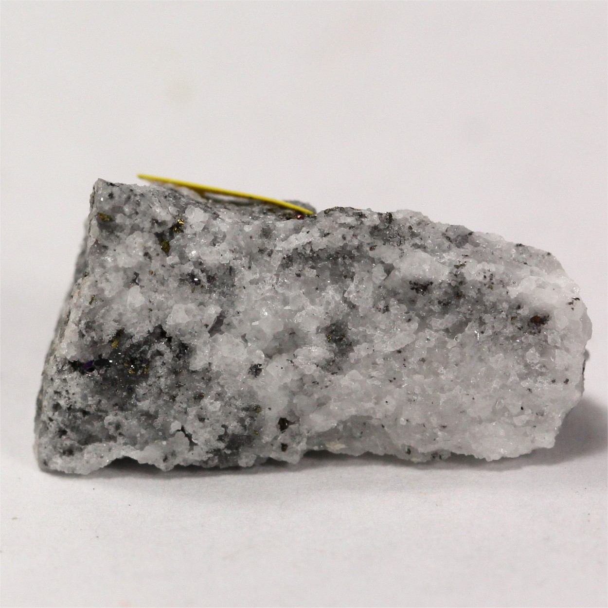 Billingsleyite With Famatinite & Chalcopyrite