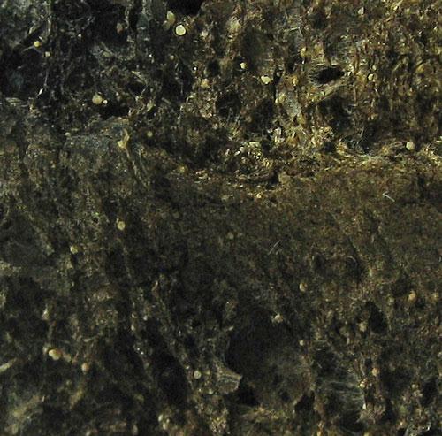 Weddellite
