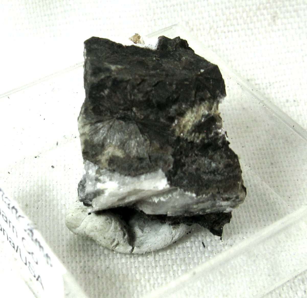 Nekoite & Johannsenite