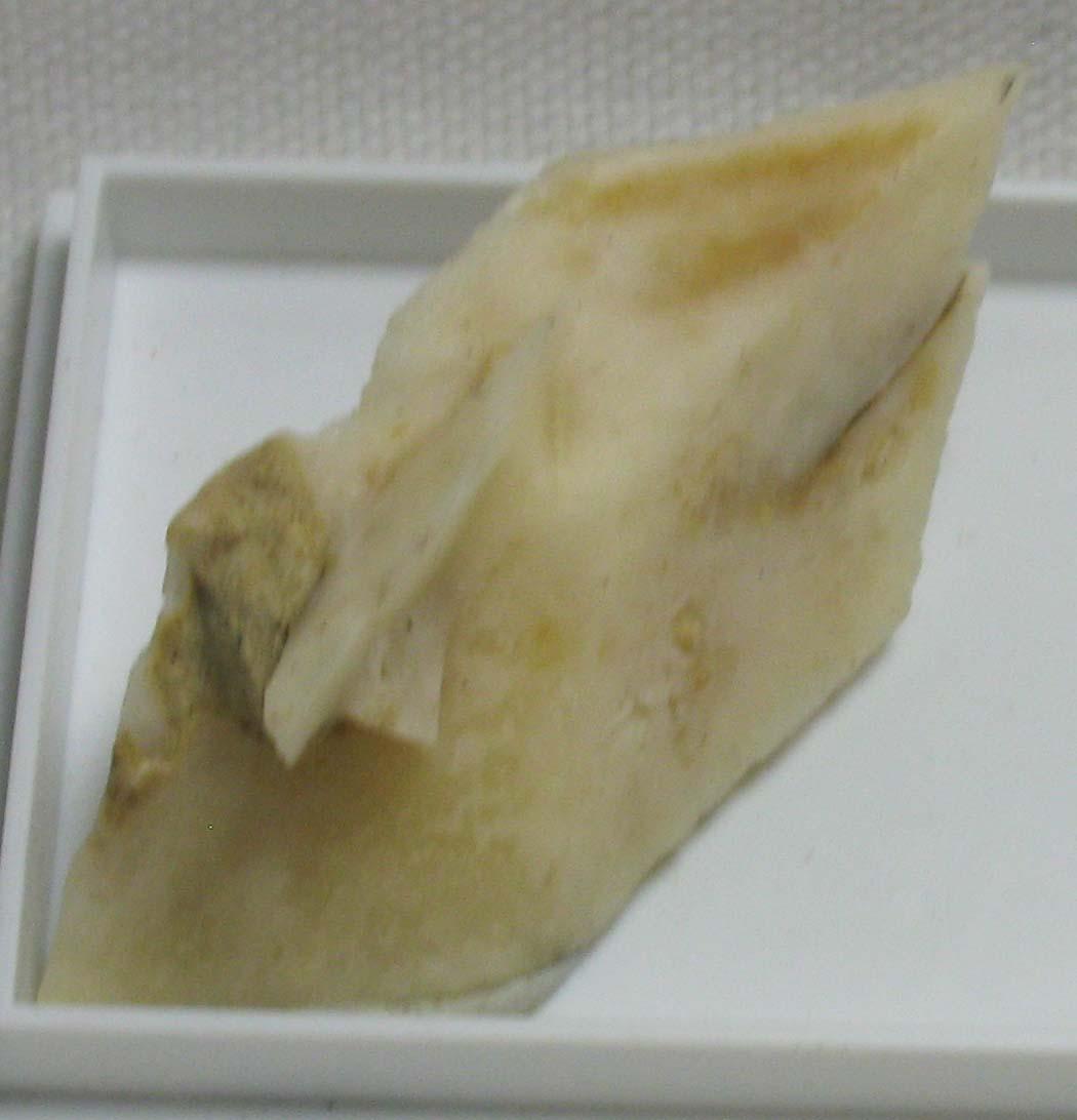 Calcite Psm Glauberite