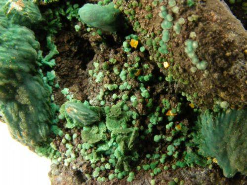 Malachite Psm Azurite With Wulfenite