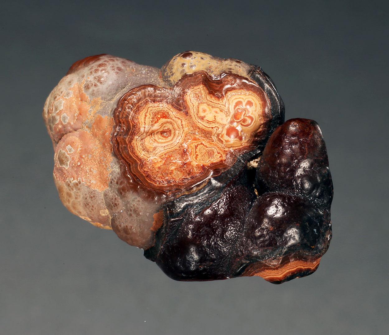 Cassiterite Var Wood Tin