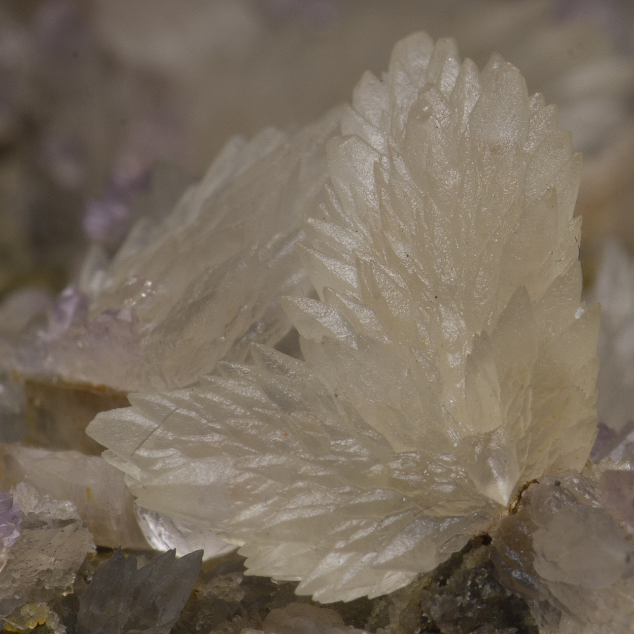 Calcite With Amethyst & Adularia