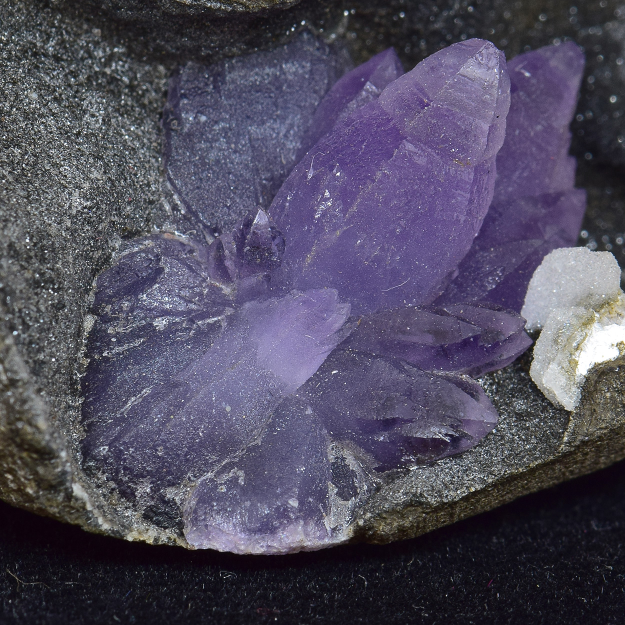 Amethyst On Chalcedony With Baryte
