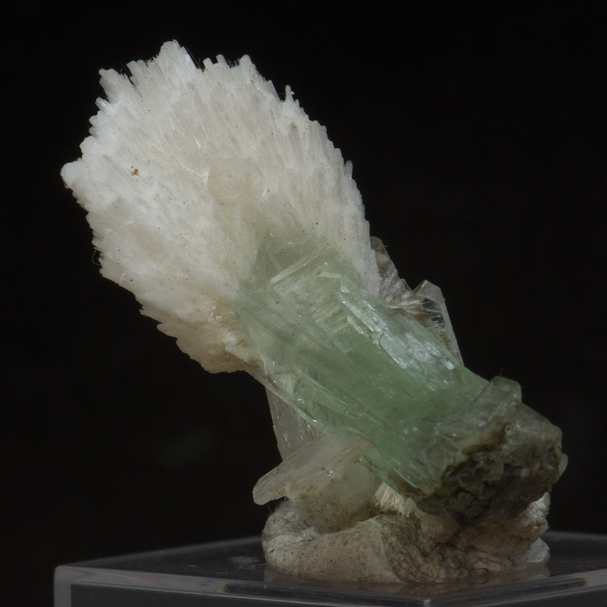 Apophyllite With Mordenite & Stilbite