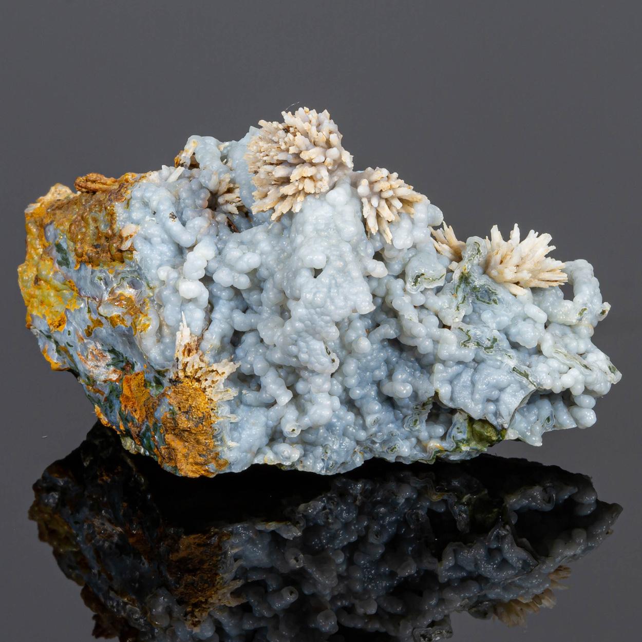 Chalcedony Psm Aragonite