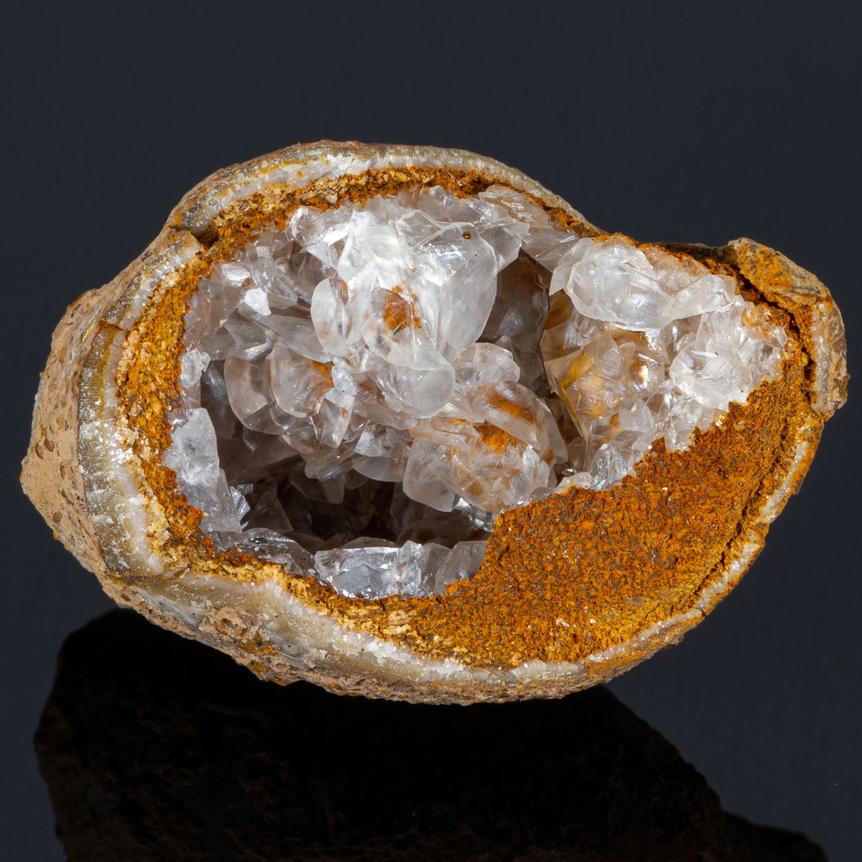 Calcite Goethite & Fossil