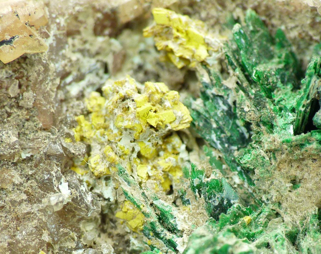 Metatyuyamunite & Malachite On Dolomite