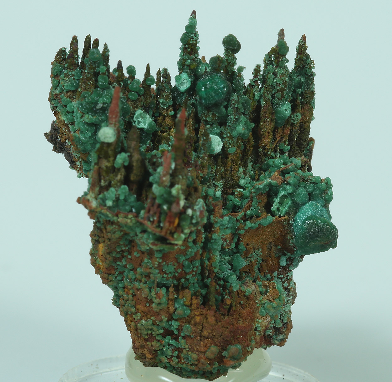 Cuprite Cuprian Adamite Malachite & Goethite