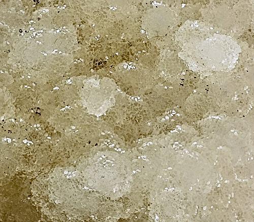 Thomsonite-Ca