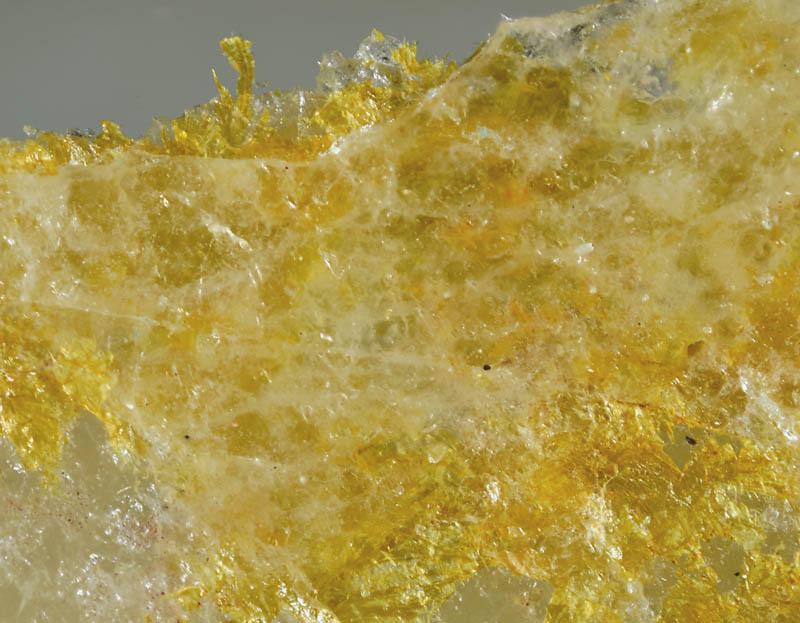 Phyllotungstite