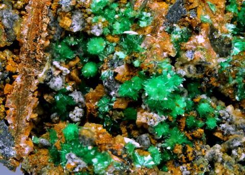 Annabergite Calcite Gaspéite Ankerite & Psilomelane