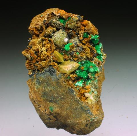 Annabergite Mimetite Calcite Ankerite Gaspéite Nickeloan Adamite & Psilomelane