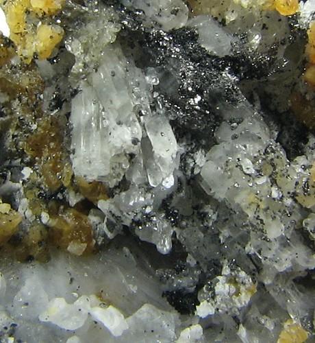 Fluoborite & Norbergite