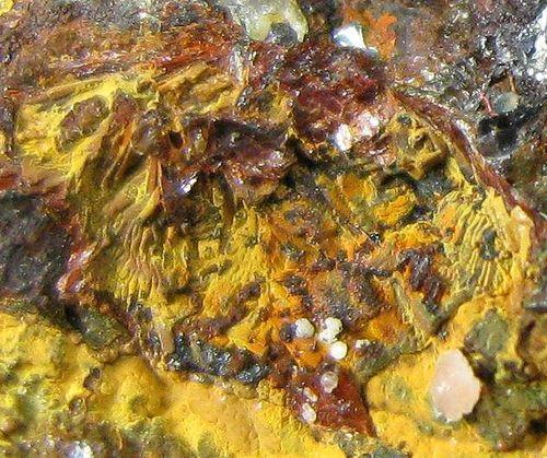 Beraunite Crandallite & Cacoxenite