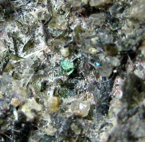 Nepheline Leucite Enstatite & Forsterite