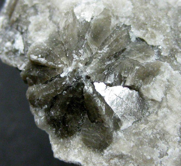 Gypsum Var Shamrock Gypsum