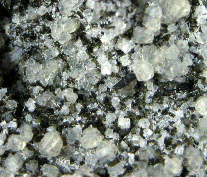 Leucite Nepheline Fluorapatite & Hornblende