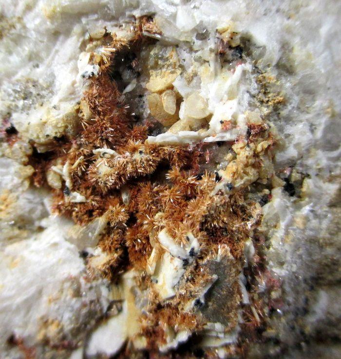 Nickeloan Erythrite & Baryte