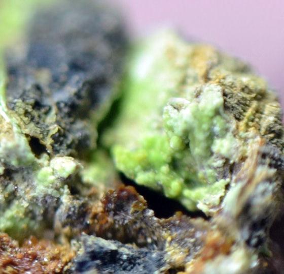 Cuprosklodowskite & Plumbojarosite