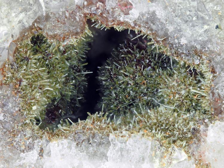 Cobaltaustinite & Cobaltlotharmeyerite