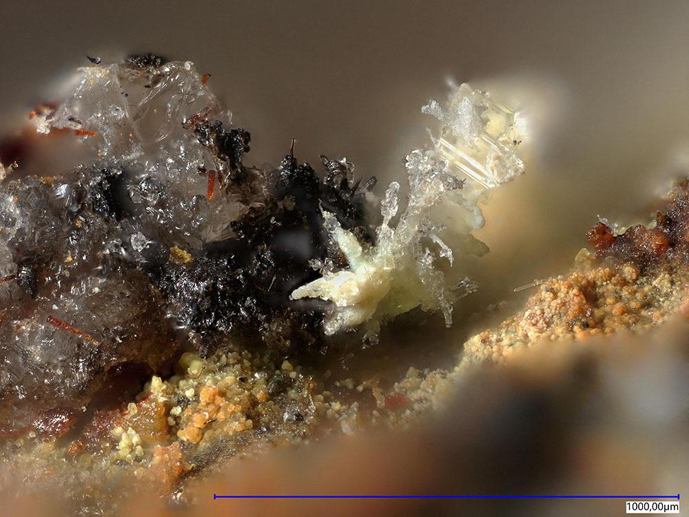 Leonardsenite & Joliotite