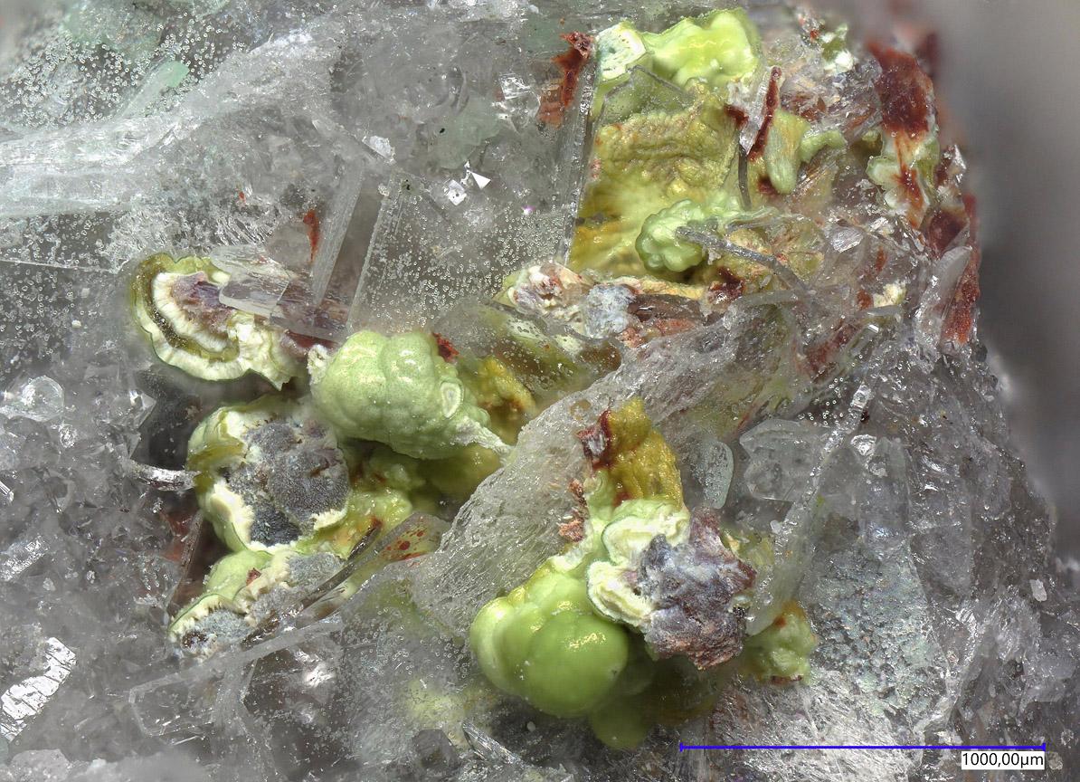 Xocolatlite Dagenaisite On Svanbergite & Zincospiroffite