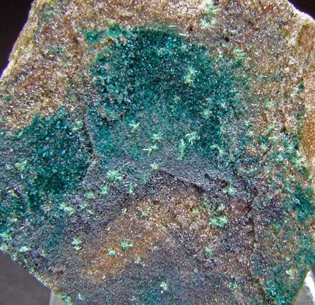 Pseudomalachite & Libethenite