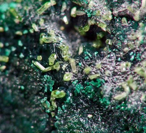 Libethenite & Pseudomalachite