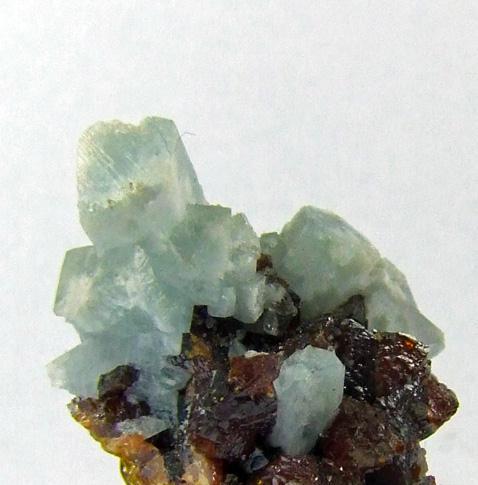 Celestine & Sphalerite