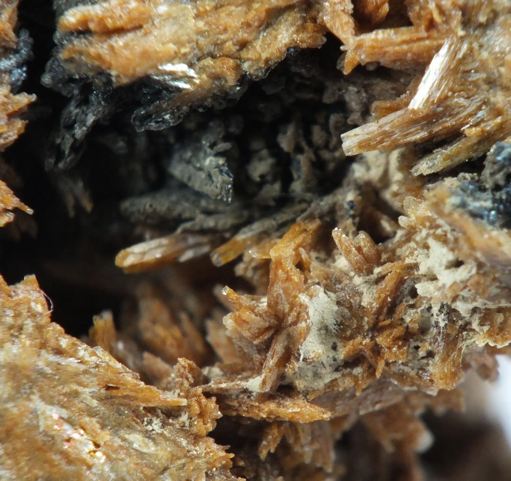Plimerite & Parahopeite