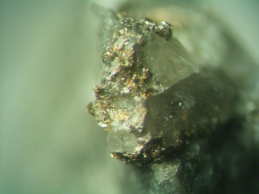 Melonite Calaverite & Gold