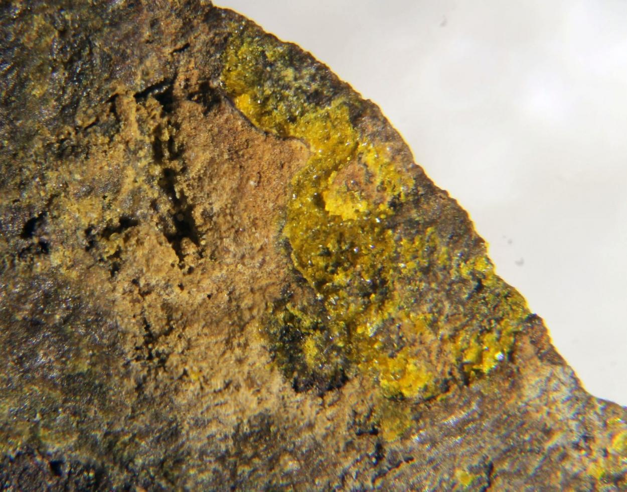 Metaschoderite