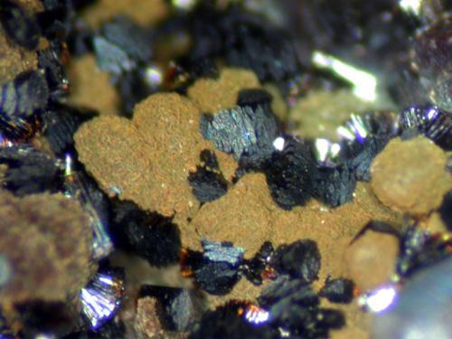Frondelite & Mitridatite