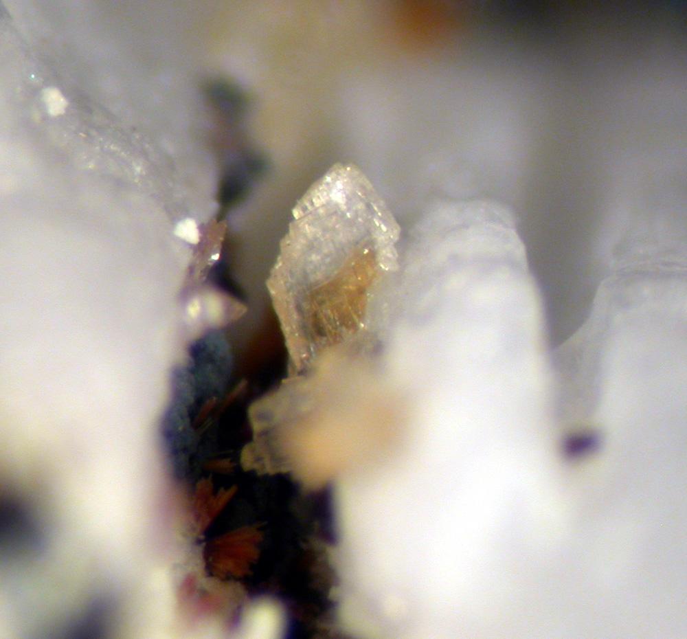 Gordonite Eleonorite & Leucophosphite