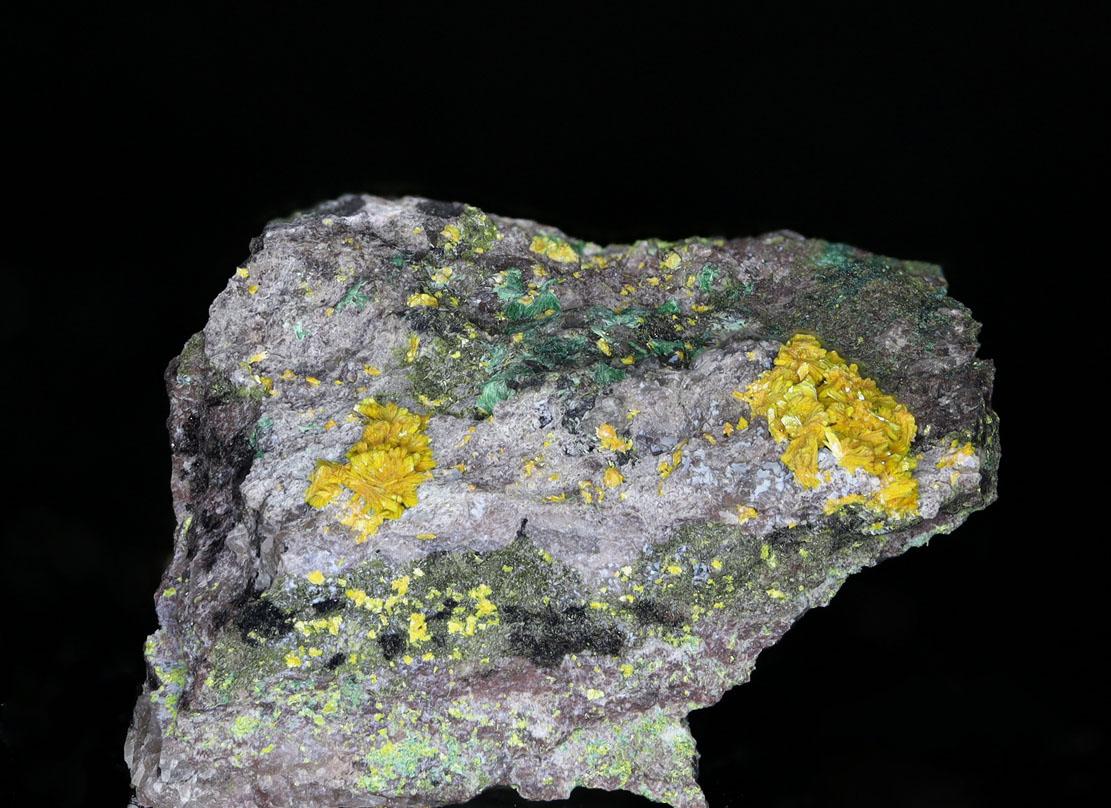 Metatyuyamunite