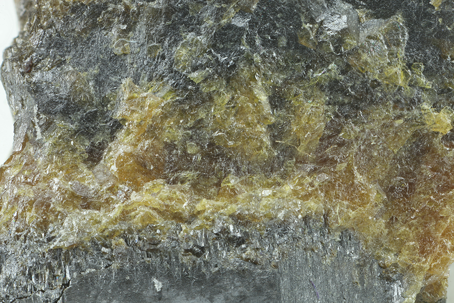 Lithiowodginite & Wodginite