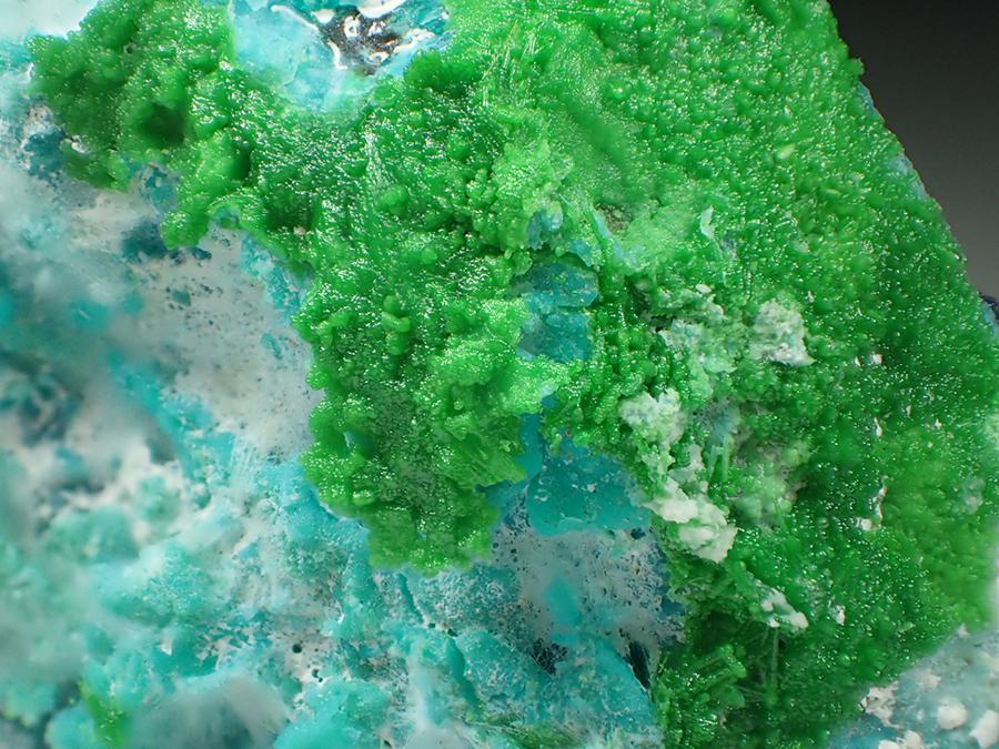 Conichalcite Leucochalcite & Chrysocolla